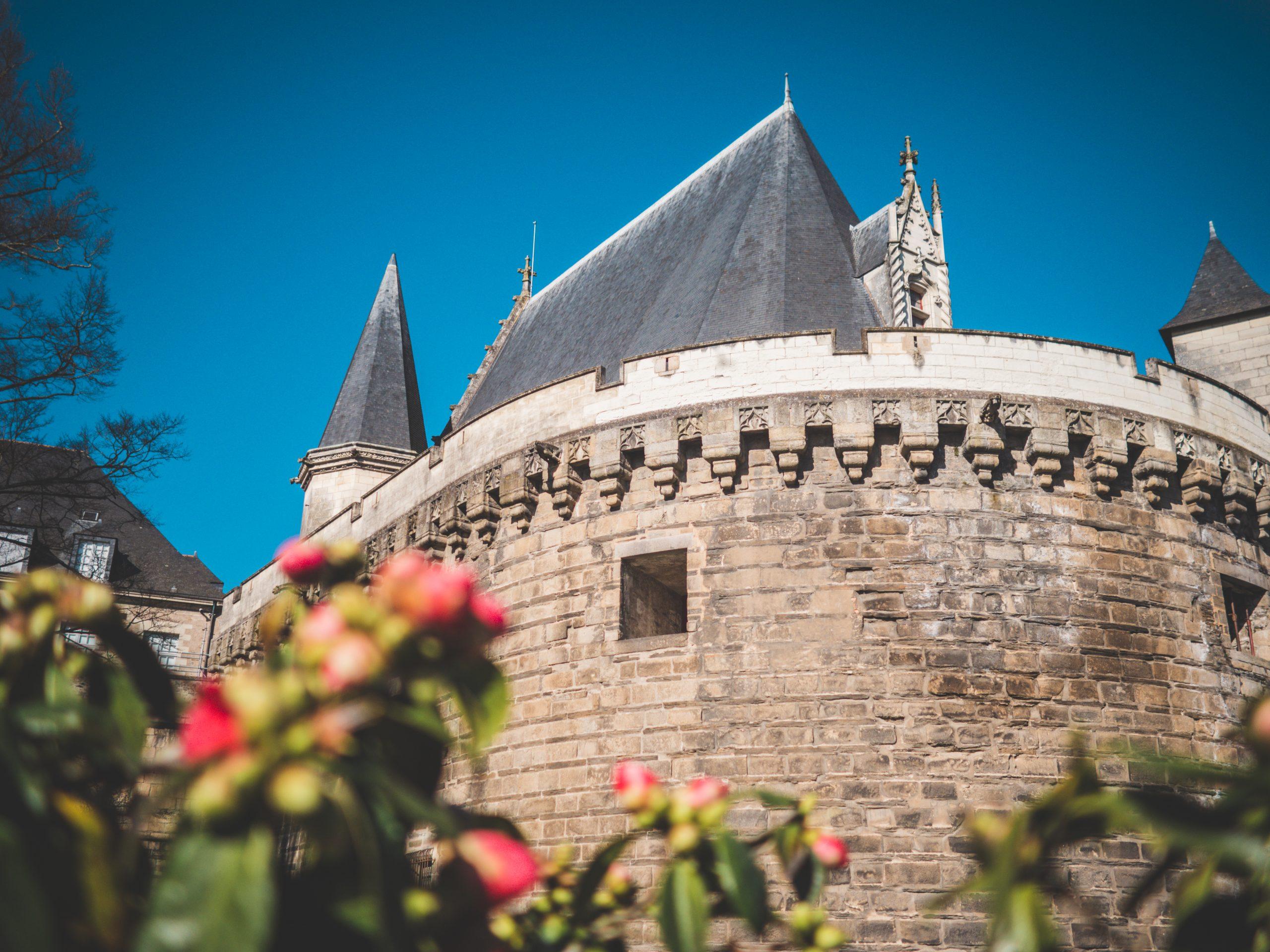 Chateau de Nantes avec les camélias